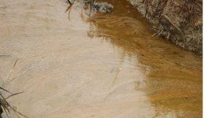 Lai láng dầu tràn từ cây xăng ra mương dẫn nước vào đồng ruộng ở Hà Tĩnh